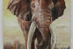Big Tusker, 85x110cm, Acryl auf Aludibondplatte, Spachtelarbeit
