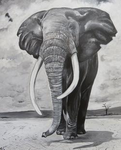 Elefanten-Bulle, 40x50cm, Acryl auf Keilrahmen