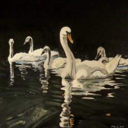 Schwäne auf dem Wasser. Acrylfarben, Format: 40 x 50 cm, Keilrahmen. Eigene Fotografie als Vorlage.