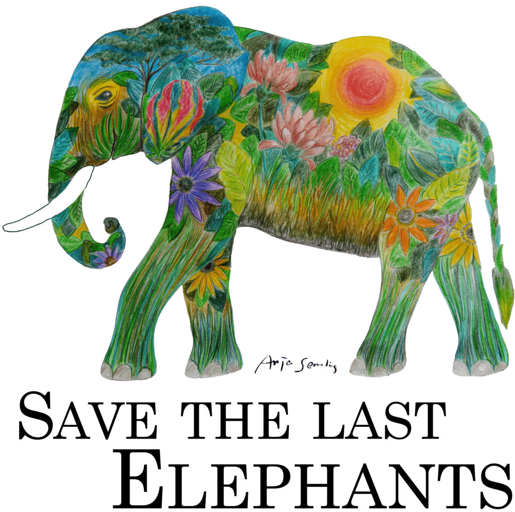 Design Elefant